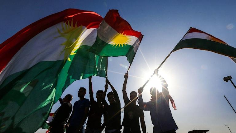Människor som viftar med kurdiska flaggor.