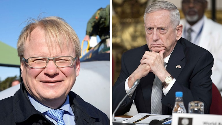 Sweden's Defence Minister Peter Hultqvist met US Secretary of Defence James Mattis.