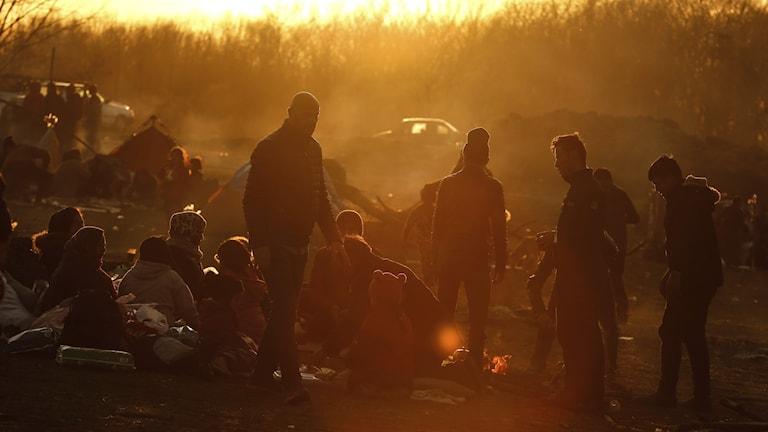 11 miljoner människor drevs på flykt i fjol