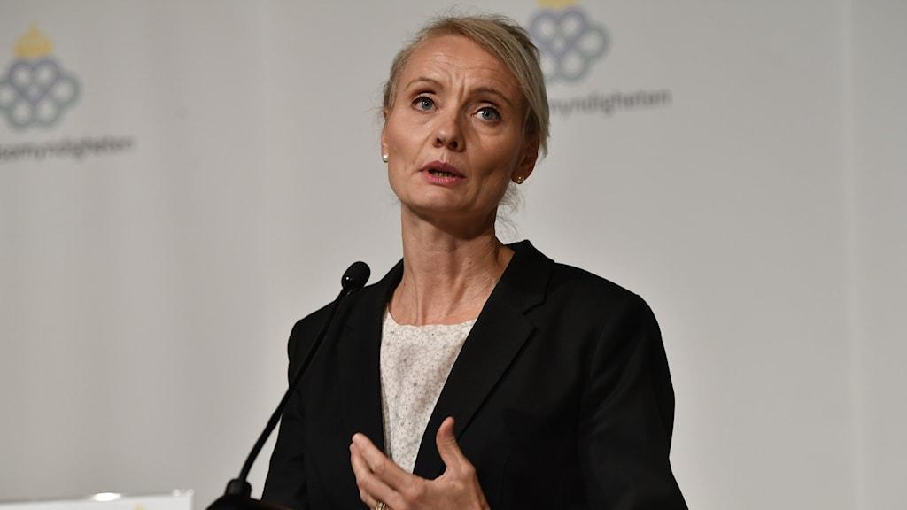 Karin Tegmark Wisell