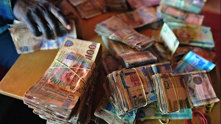 Pengar på ett skrivbord, i Gambias valuta