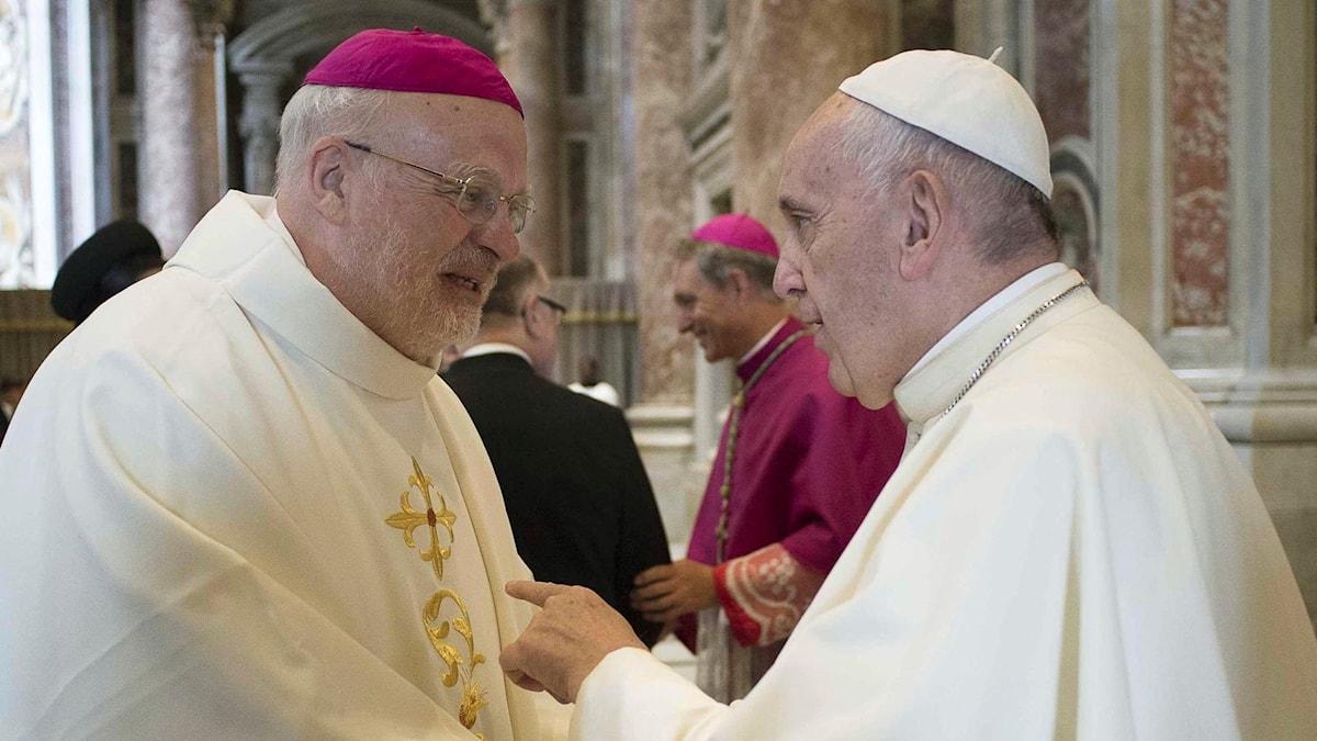 Anders Arborelius, biskop för Stockholms katolska stift