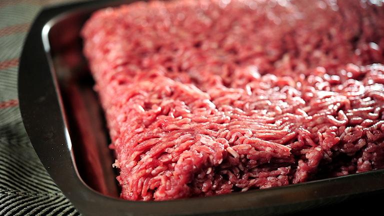 Rå köttfärs.
