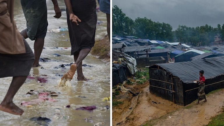 Under de senste tre veckorna har hundratusentals rohingyer sökt sig till flyktinglägren i Bangladesh.
