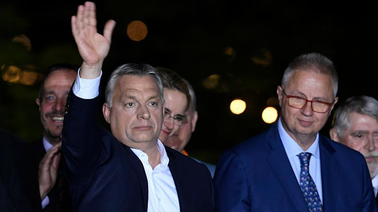 Viktor Orbán efter segern. Foto: Szilard Koszticsak/TT.