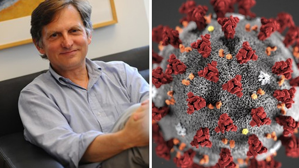 Ian Lipkin är en av världens främsta virusexperter. T h: bild på coronaviruset. Foto: Columbia University/Lizabeth Menzies/AFP/TT. Montage: Sveriges Radio.