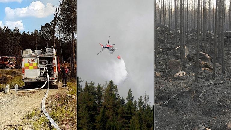 Tredelad bild: Brandbil, vattenbombning från helikopter, bränd skog.