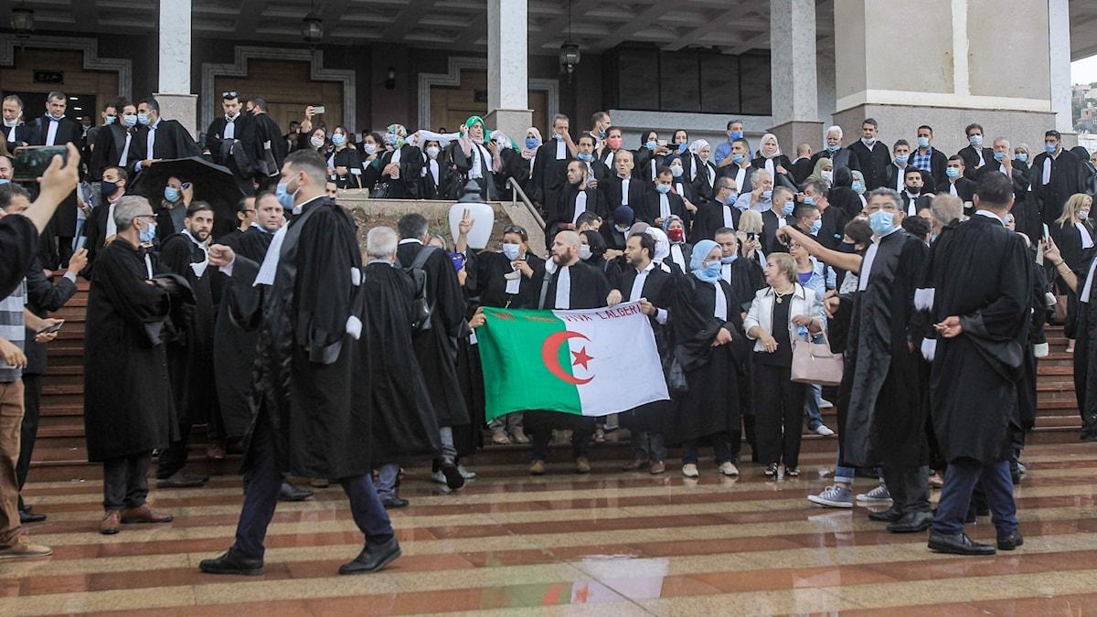 en grupp advokater i svarta dräkter med en flagga