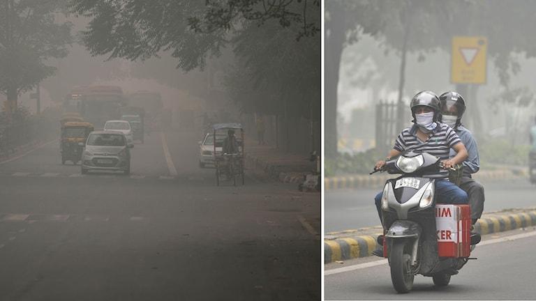 New Delhi-området har omkring 20 miljoner invånare som den här veckan beordras att hålla sig inomhus, på grund av tjock, giftig smog.