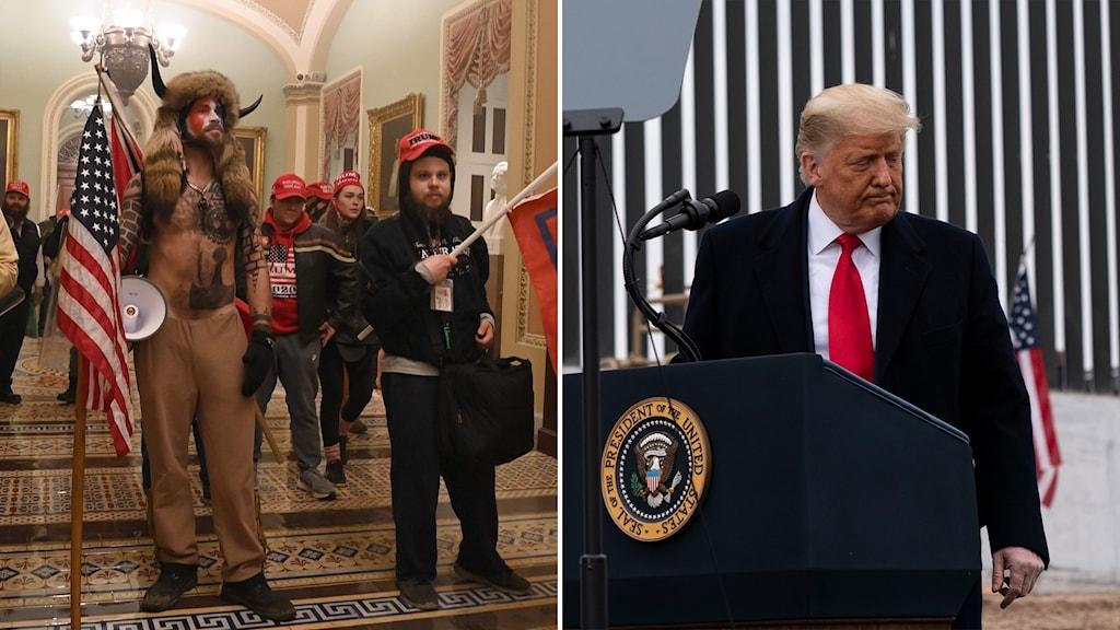 Delad bild: upprorsmakare i kongressen och Trump i en talarstol vänder sig bort.