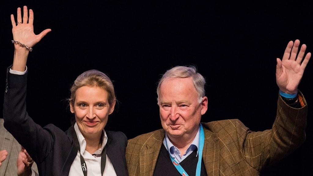 Alice Weidel och Alexander Gauland.
