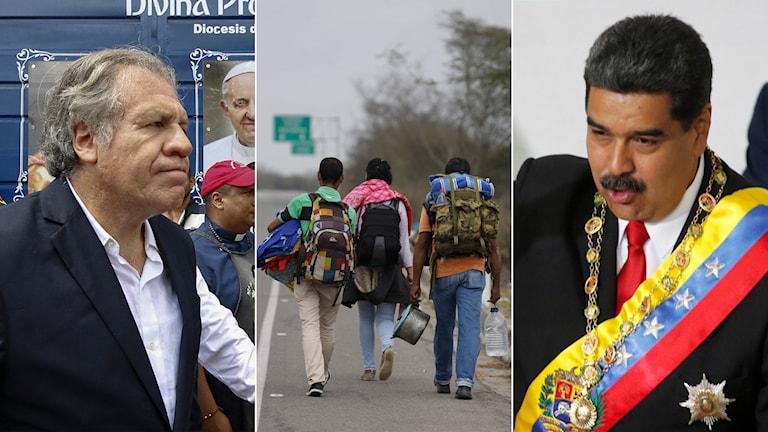 Tredelad bild: Man i kostym, venezolaner som vandrar på en motorväg, man med ordensband.