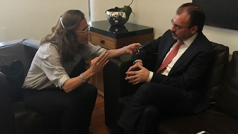 Lotten Collin och Mexikos utrikesminister Luis Videgaray