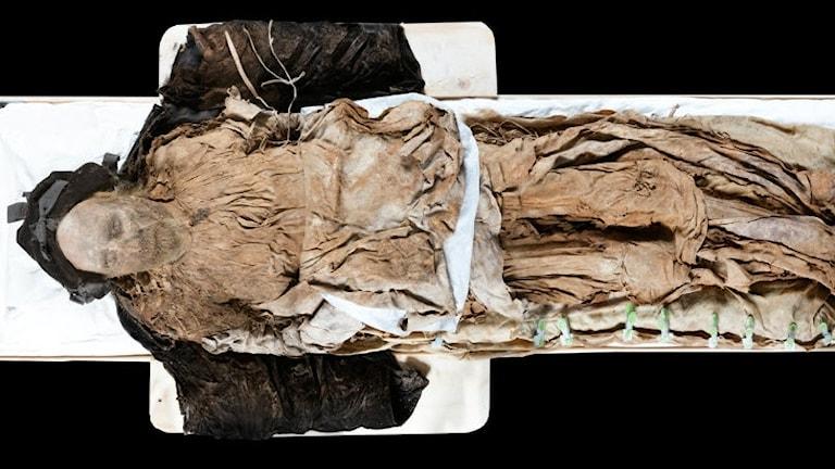 Bilden visar stoftet efter biskop Peder Winstrup, död 1679, klädd i begravningskläder i kistan. Foto: Gunnar Menander.