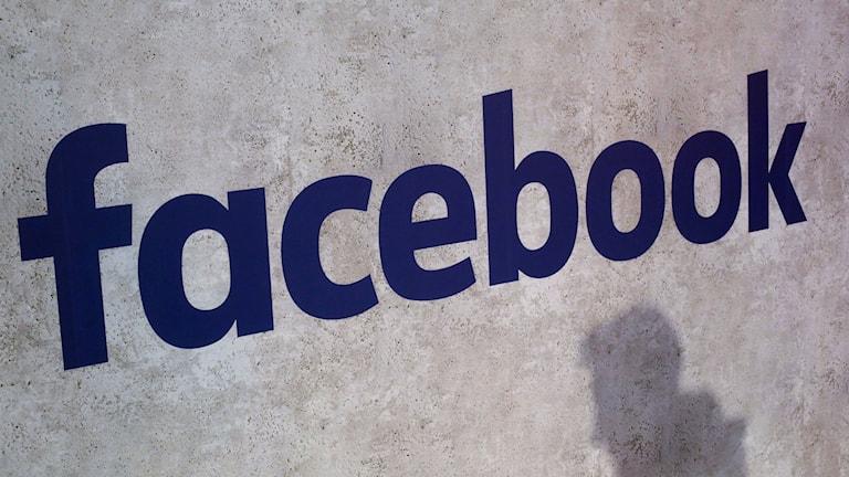 Den utredning som pågår i Storbritannien gäller i första hand hur Cambridge Analytica kunnat komma över omkring 50 miljoner profiler från Facebook