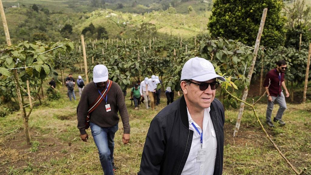 Säkerhetsrådets ordförande, Perus ambassadör Gustavo Meza Cuadra, uttryckte efter besöket i Colombia sin oro för alla mord.