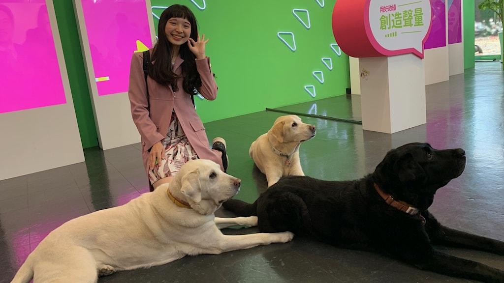 Kvinna intill tre hundar