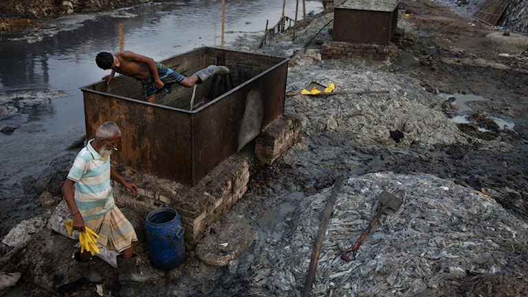 I Bangladesh utsätts många för farliga kemikalier i arbetet.