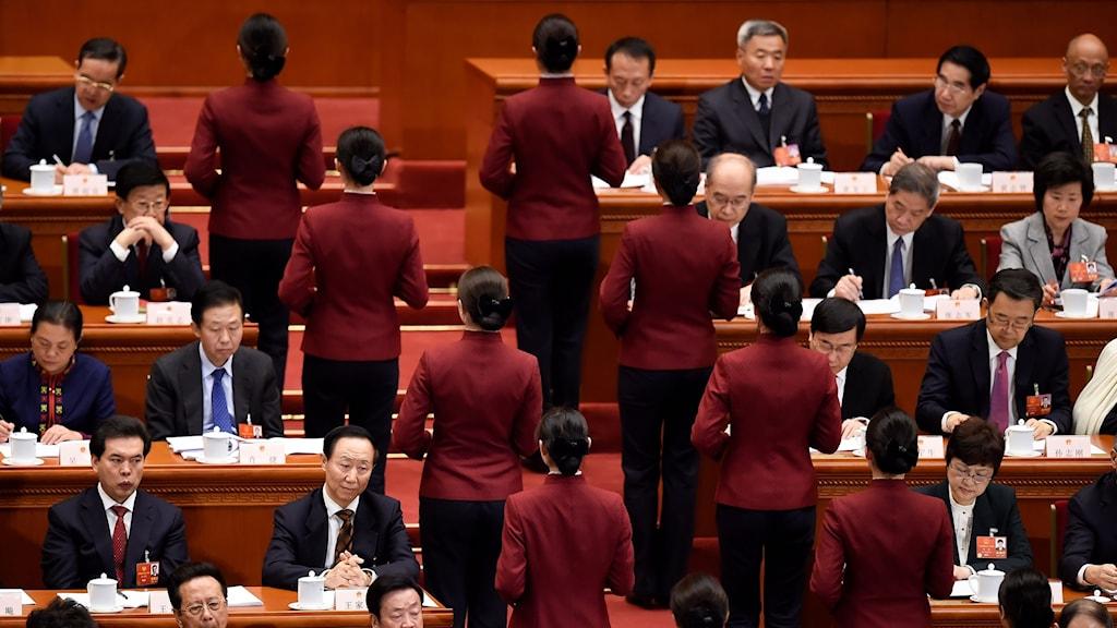 Kongress i Kina