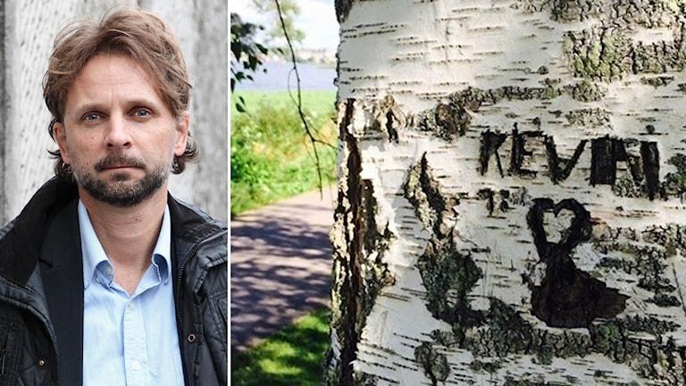 """Bildkollage med porträtt på en man och ett träd där """"Kevin"""" är inristat."""