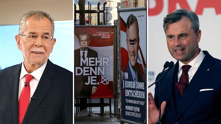 Bildkollage med Alexander van der Bellen, Norbert Hofer och valplakat för de båda presidentkandidaterna.