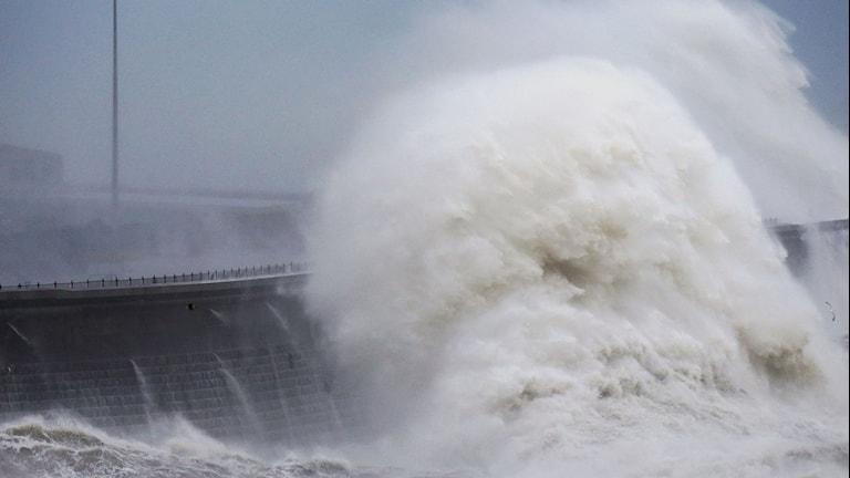 I Dover slog stormen Angus upp stora vågor mot hamnen.