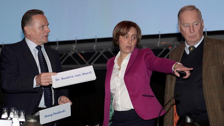 Den högerpopulistiska partiledaren Beatrix von Storch har polisanmälts efter en hetsig tweet.