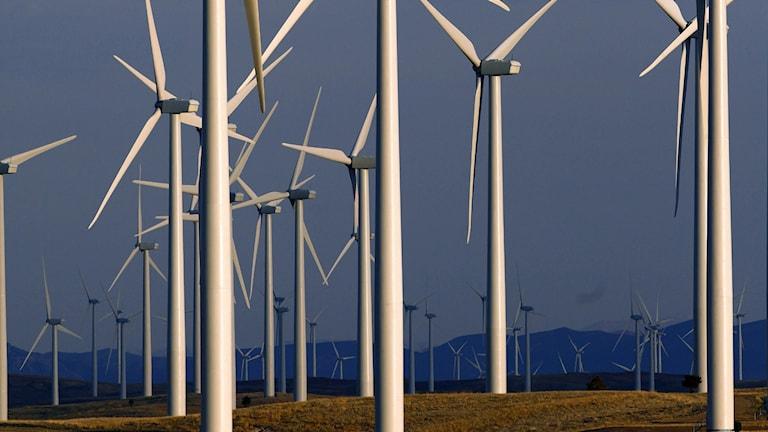 Kapplöpning mellan energiprojekt i Europa