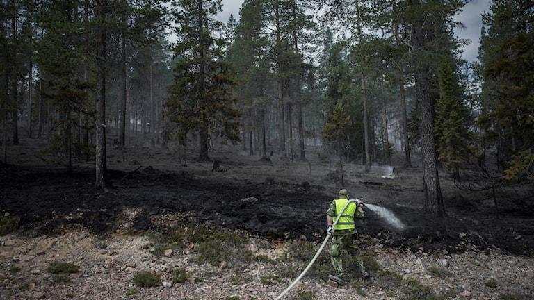 Personal från hemvärnet hjälpte till att släcka skogsbranden vid Älvdalens skjutfält i slutet på juli.