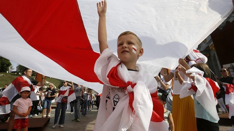 Ukraine Belarus Protests