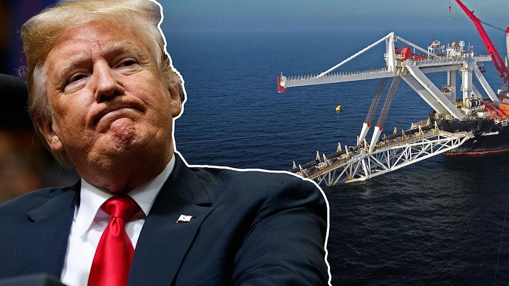 President Trump nu godkänt amerikanska sanktioner mot bolag som jobbar med att bygga den ryska gasledningen Nord Stream 2.
