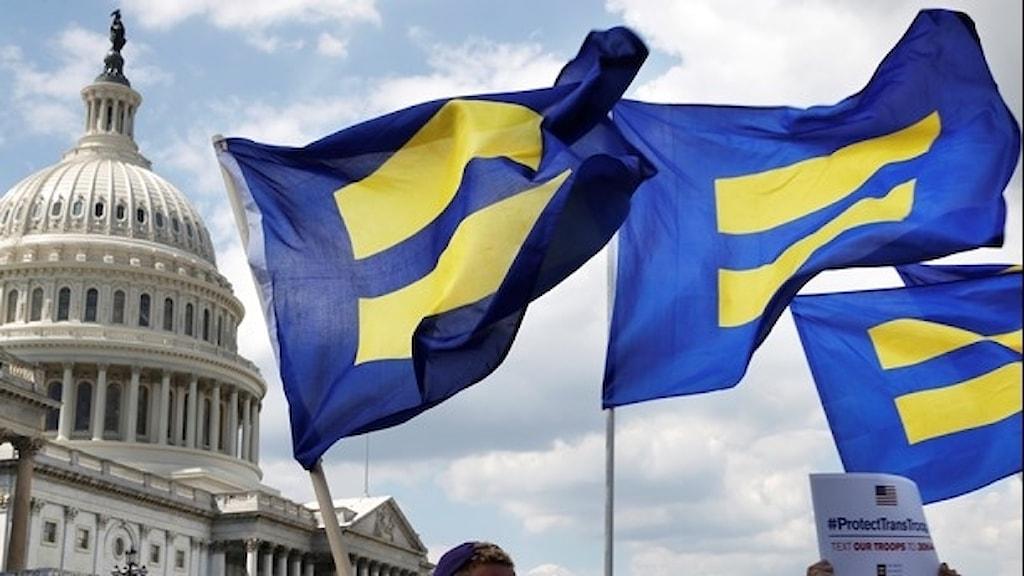 Flaggor till stöd för transpersoner inom USA:s militär.