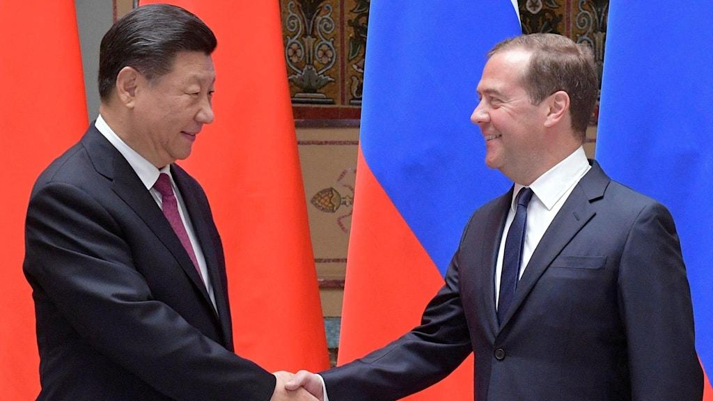 Kinas president Xi Jinping och Rysslands premiärminister Dmitrij Medvedev.