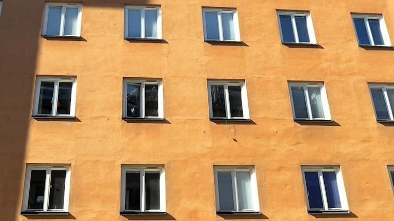 Bilden visar fönster på ett hyreshus som är putsat i ockrafärg. Foto: Hasse Holmberg/TT.
