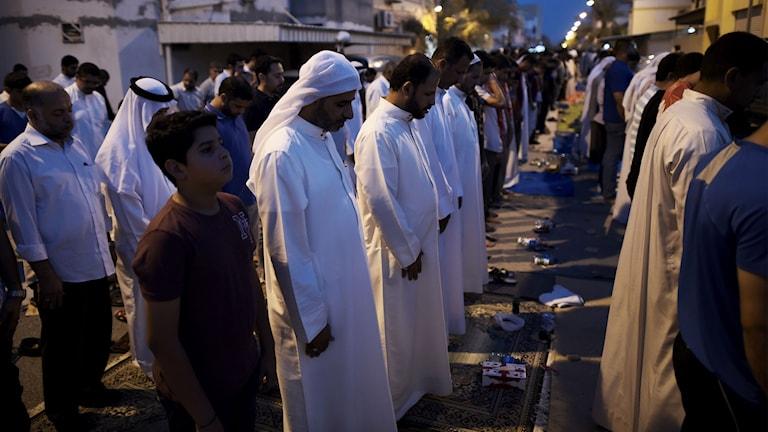 Demonstranter i Bahrain ber tillsammans efter återkallelsen av Sheikh Isa Qassims medborgarskap.