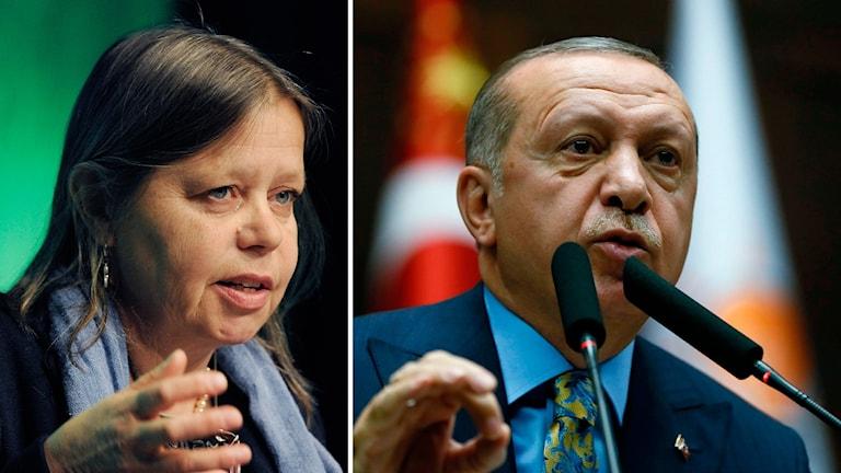 Mellanösternanalytikern Bitte Hammargren och Turkiets president Erdogan.