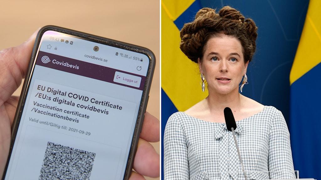 Tvådelad bild med en närbidl på ett covid-intyg på en mobil till vänster och amanda lind vid talarstol till höger.