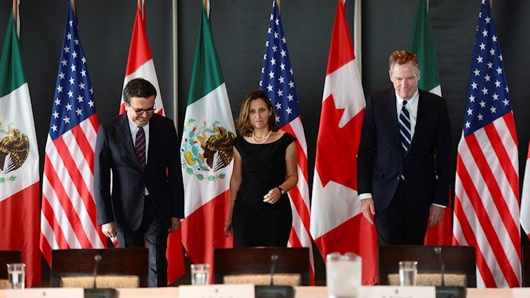 Kanadas utrikesminister under möte med Mexikos finansminister och USA:s representant.