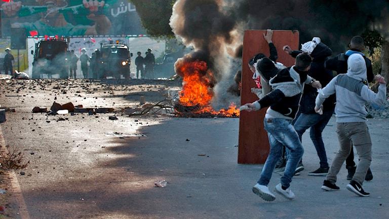 Israel, palestinska demonstranter kastar seten.