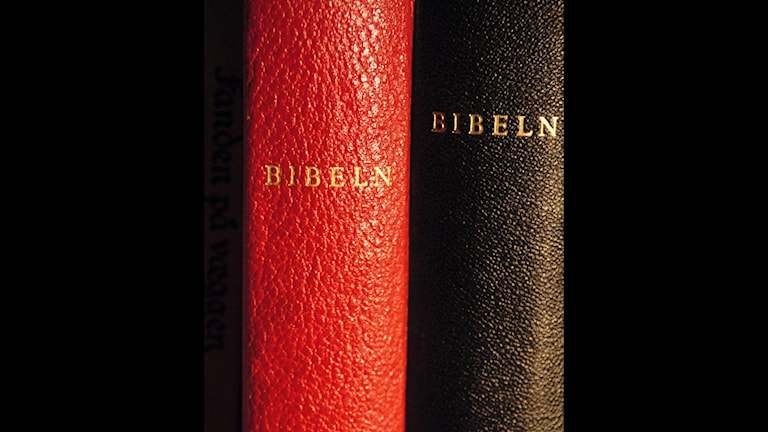 Bibel bibeln