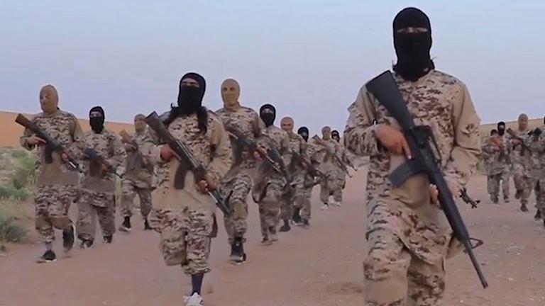 Bilden visar IS-krigare i den syriska provinsen Deir el-Zour.