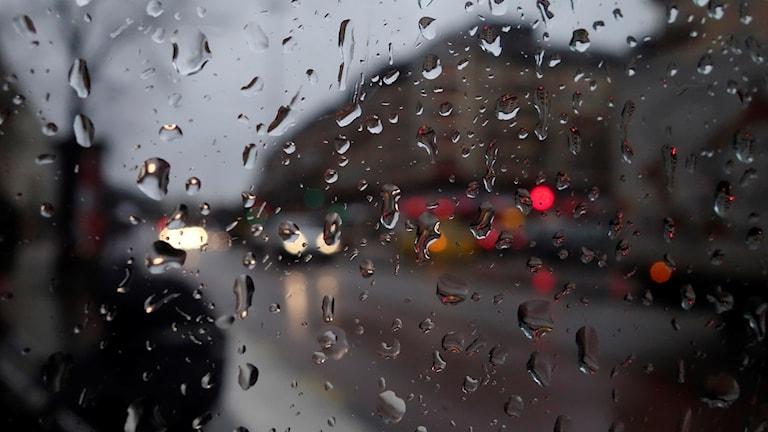 Regn i Göteborg. Foto: Hasse Holmberg/TT.