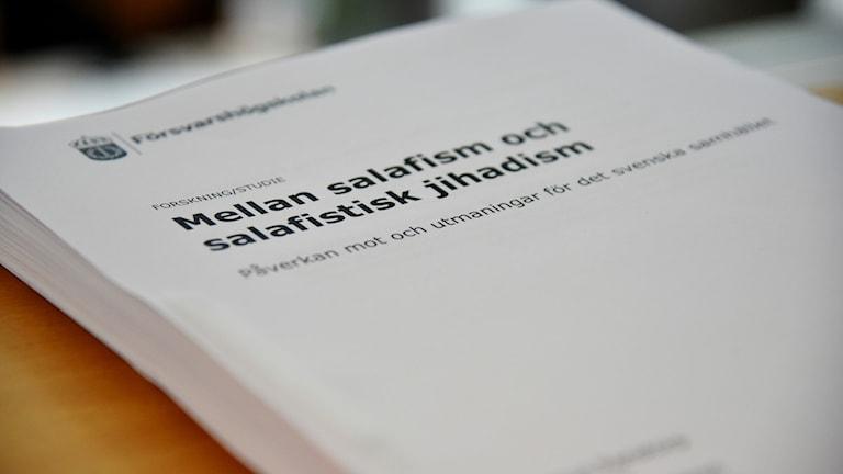 Rapporten. Foto: Susanna Persson Öste/TT.
