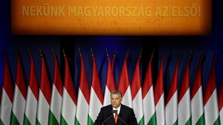 Man framför en fond av ungerska flaggor