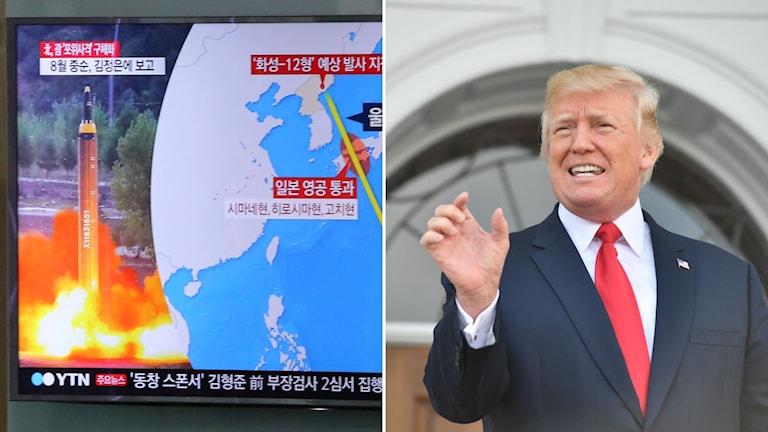 Tv-bilder från Sydkorea och USA:s president Donald Trump.