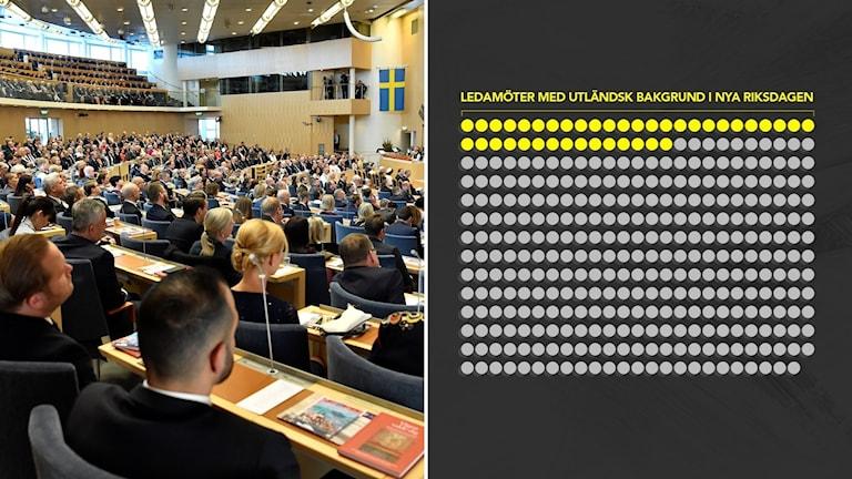 riksdagsledamöter, grafik