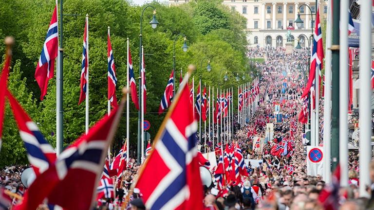 Flaggor. Foto: Audun Braastad/TT.