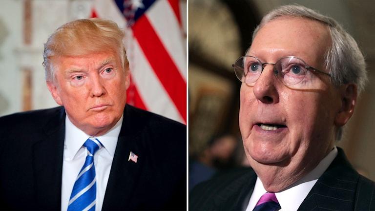 USA:s president Donald Trump och republikanernas ledare i senaten Mitch McConnell.