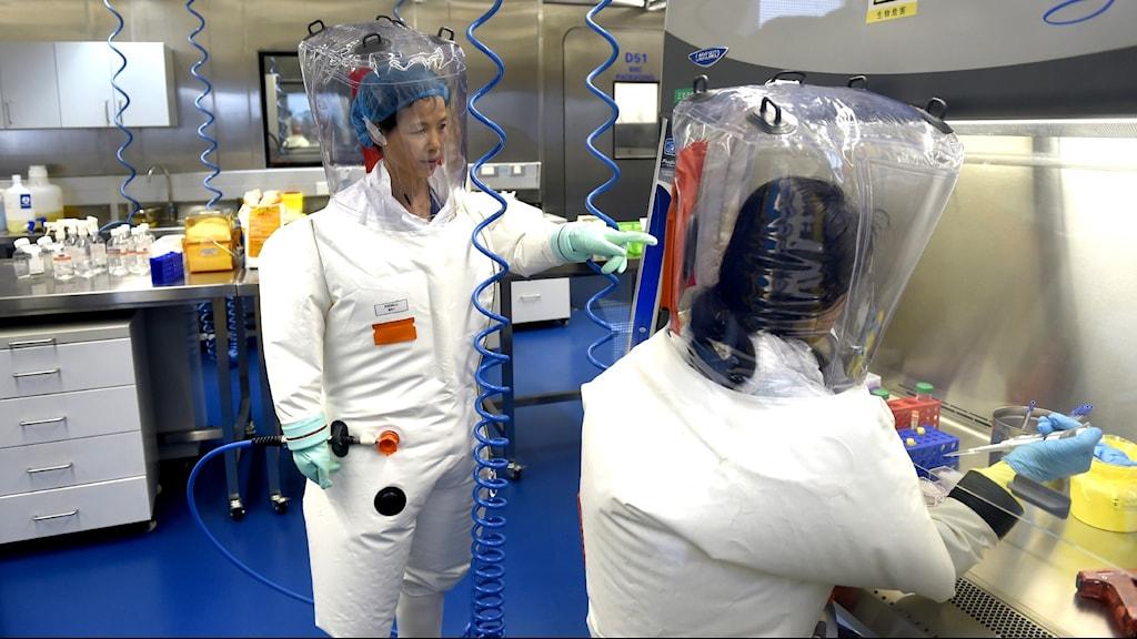 Två forskare i ett viruslabb i Wuhan, Kina.