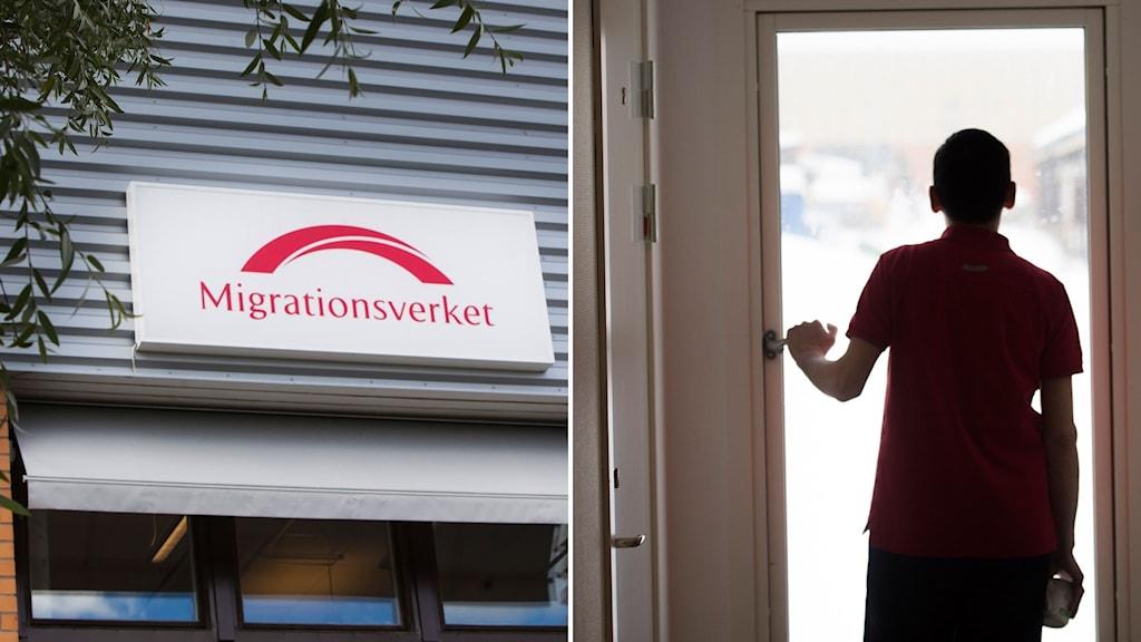 montage: migrationsverkets logga med anonym pojke bakifrån som tittar ut genom fönsterdörr